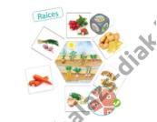 Honnan származnak az élelmiszereink? Képkártya készlet