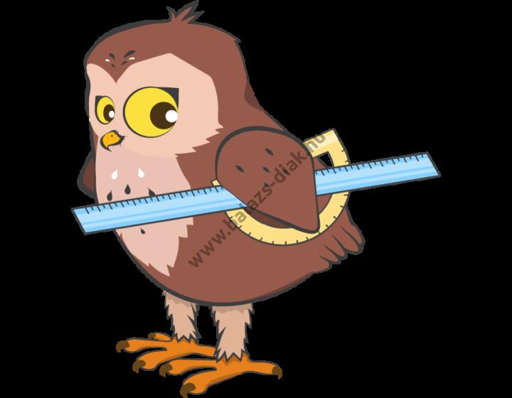 Ügyesedni csomag 2 - matematikai készségfejlesztés - 20 db fejlesztő szoftver