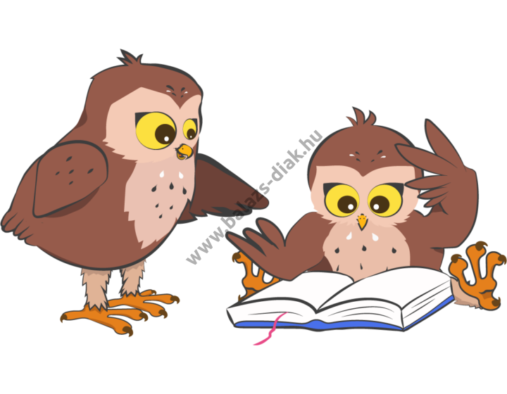 Ügyesedni csomag 6 - SNI sajátos nevelési igényű gyermekeknek - 20 db fejlesztő szoftver