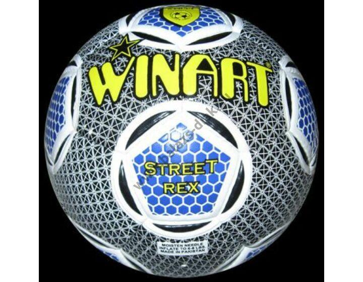 STREET REX BLUE No. 5 futball labda
